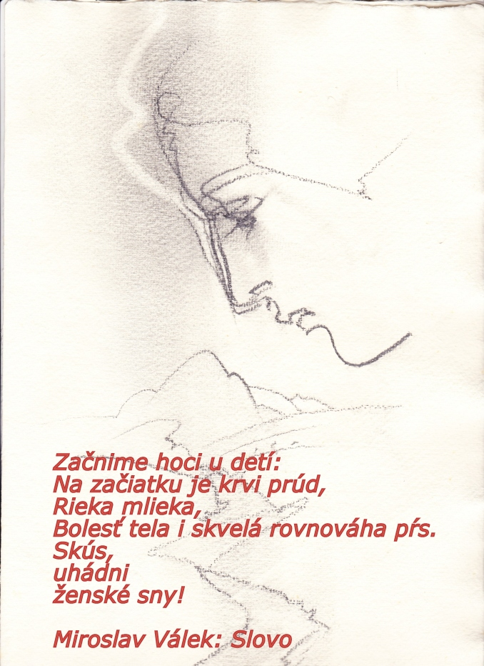 kresba_i._r._678.jpg