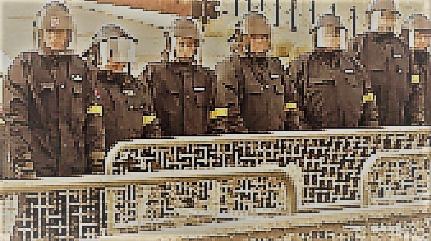 policia_-pixelhneda.jpg