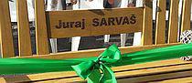 sarvas_2.jpg