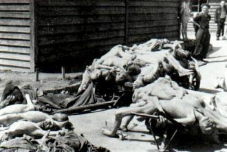 5_co_nasli_osloboditelia_koncentracneho_tabora_pri_mauthausene_5._maja_1945.jpg