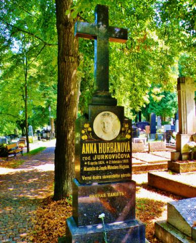 09_nahrobny_pomnik_anicka_hurbanovej-jurkovicovej_na_martinskom_cintorine._484x600.jpg