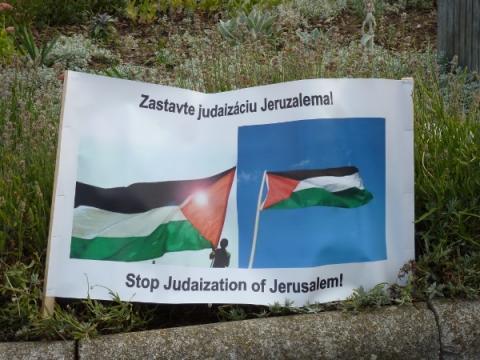 palestina_protest_13.jpg