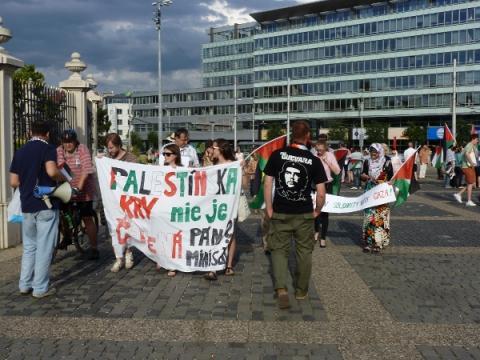 palestina_protest_17a.jpg