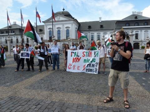 palestina_protest_2.jpg