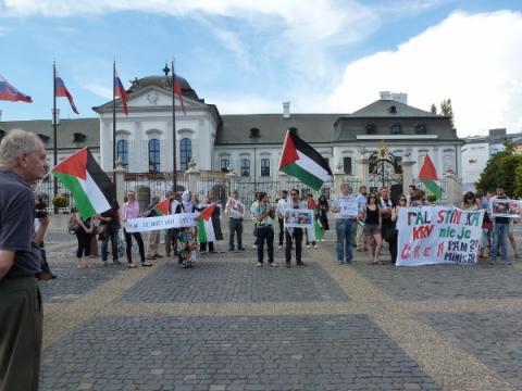 palestina_protest_5.jpg