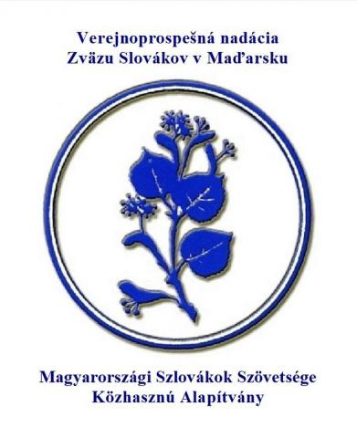 vpnzsm-logo.jpg