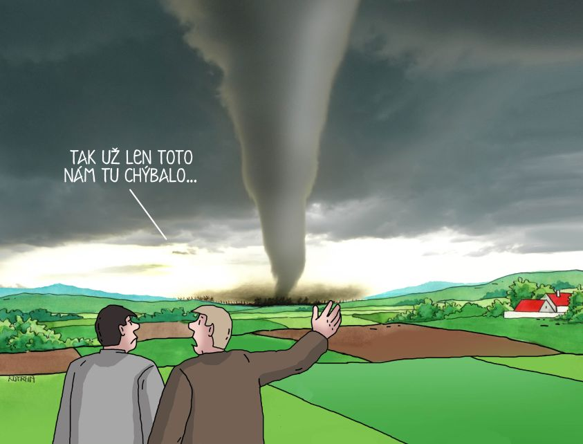 tortoto_843.jpg